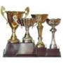Italy Cup (ถ้วยอิตาลี)