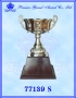 ถ้วยรางวัล อิตาลี 77139 สีเงิน