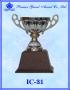 ถ้วยรางวัล อิตาลี IC 31