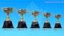 - ถ้วยรางวัล อิตาลี CMB51012 สีทอง